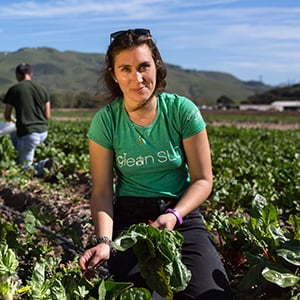 Fighting Food Waste With Gleaning
