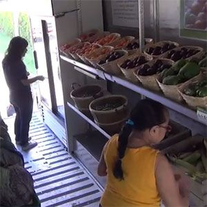 People enjoying choosing fresh produce at a mobile pantry.