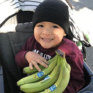 Boy in stroller holding bananas