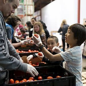 Boy volunteering at food bank by giving out tomatoes