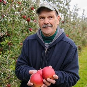 Apple farmer holding apples in field