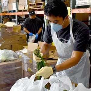 Volunteer packing asparagus into bag for food bank