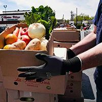 Volunteer wearing gloves and holding a box of donated produce