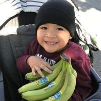 Boy in stroller holding bananas