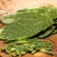 Cactus paddles otherwise known as Nopales